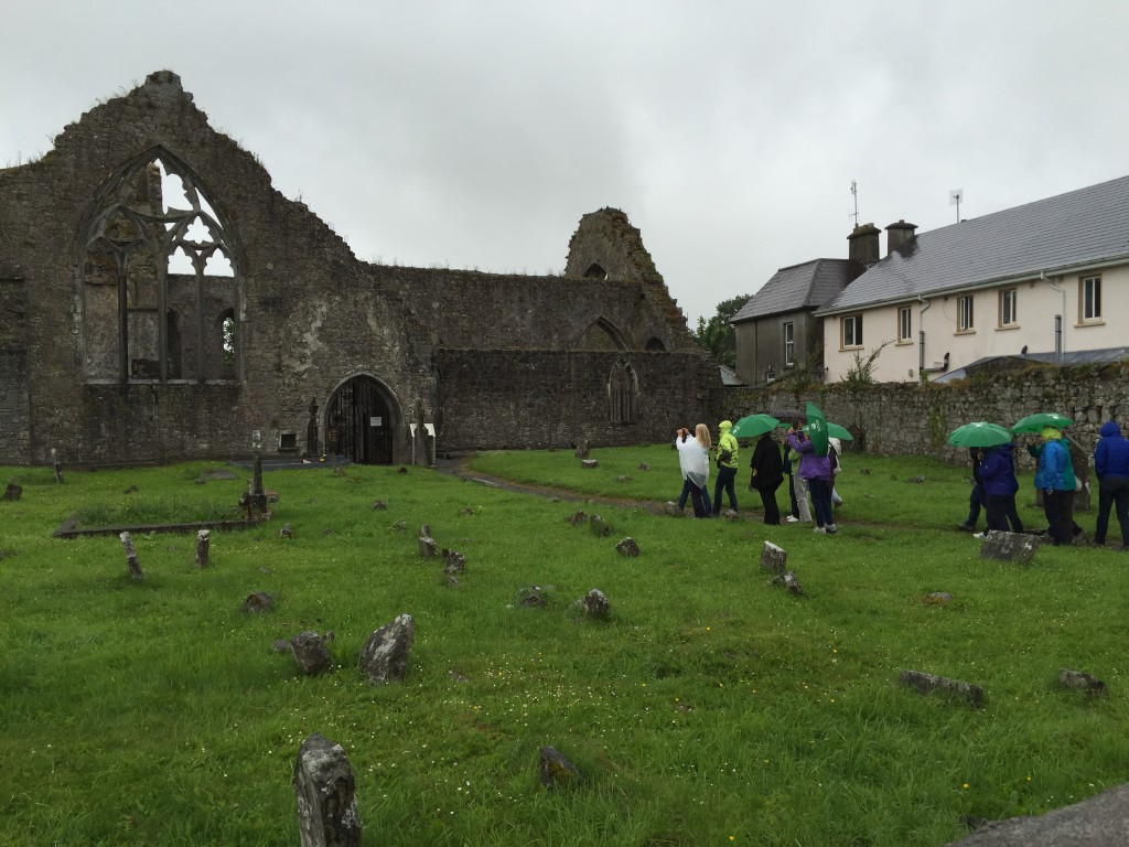 Einmarsch in the Field of Athenry